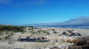 Nedonna Beach, OR